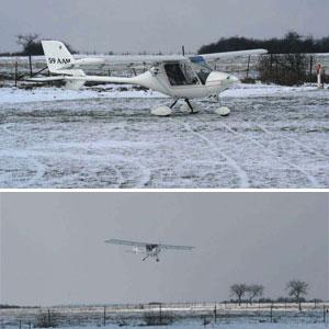 Storch en neige 2005